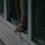 Տղամարդն ինքնասպան է եղել՝ երեխաների աչքի առաջ նետվելով պատուհանից
