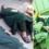 Այս պատմությունը սենսացիա է դարձել…վիրաբույժներն ընկան վիրահատարանի գետնին, քանի որ նրանց հետ մի անհավանական բան տեղի ունեցավ
